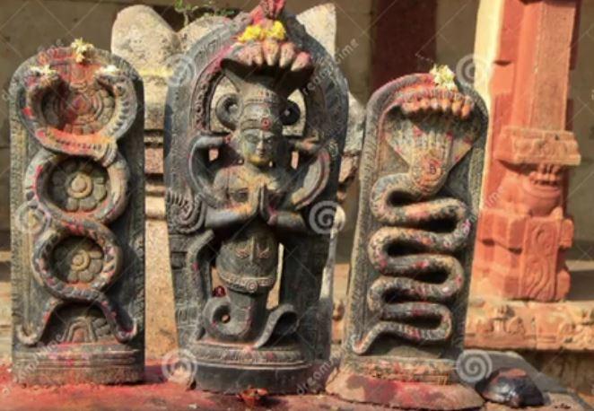 индийски наги